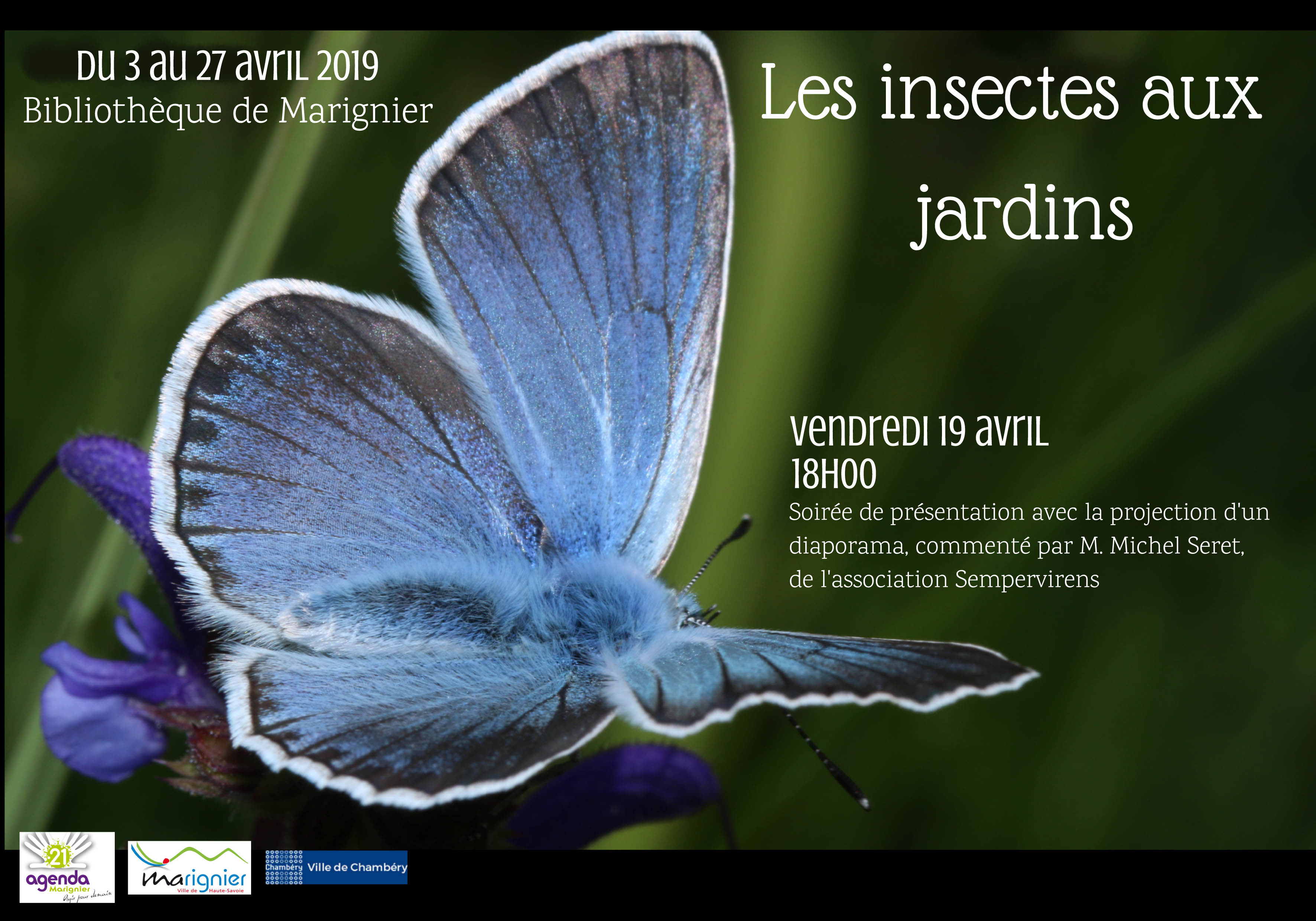 Expo Insectes  |